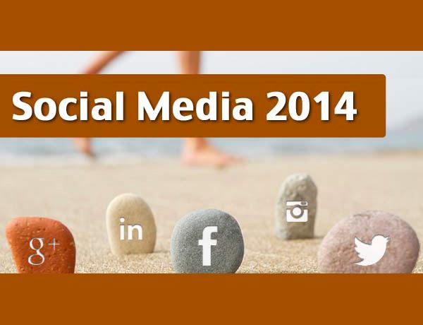 Chiffres Social Media 2014