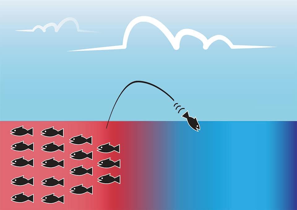 strategie ocean bleu vs ocean rouge